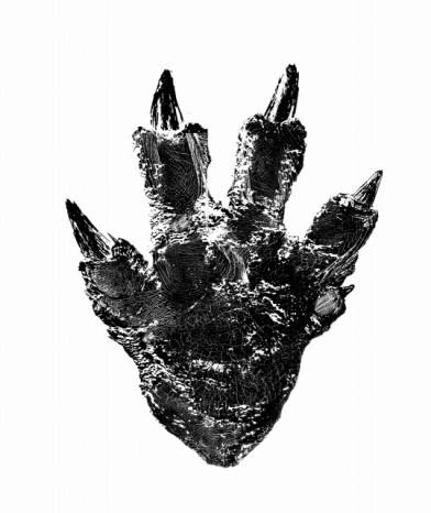 Godzilla_2016_Foot_Design
